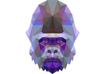 Amazing Gorilla Wall Decals