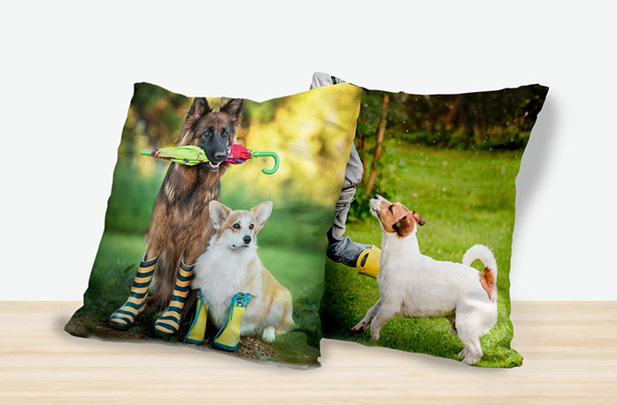 photo cushions for pet
