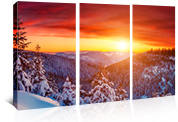 Canvas Prints in various formats and sizes